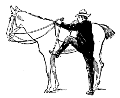 Getting-gack-on-the-horse